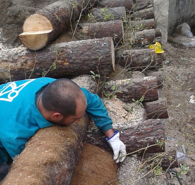 Paisajes del Sur realiza un muro krainer en Bande