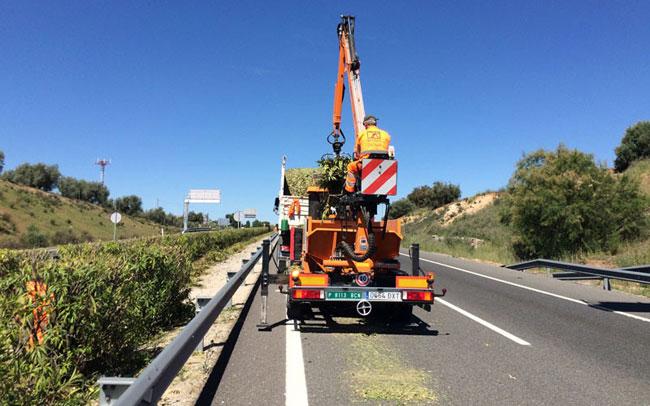 Trabajos de poda en las autovías andaluzas