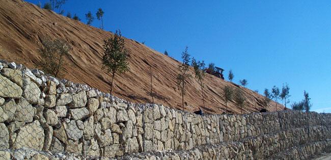 Plantaciones en restauraciones paisajísticas